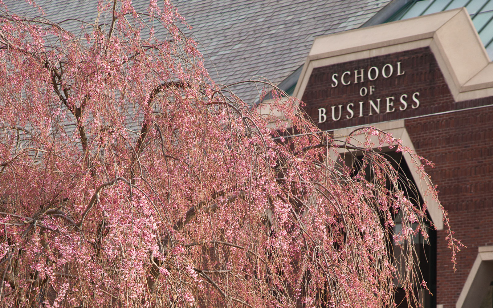 School of Business Exterior, Winter